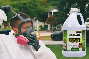Get rid of mold stains easily using Rmr-86