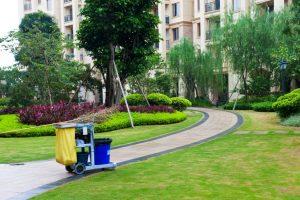 Best Gardening Supplies in Singapore: Go Green!